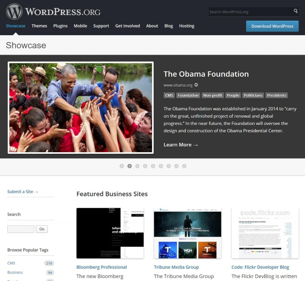 WordPress vitrin