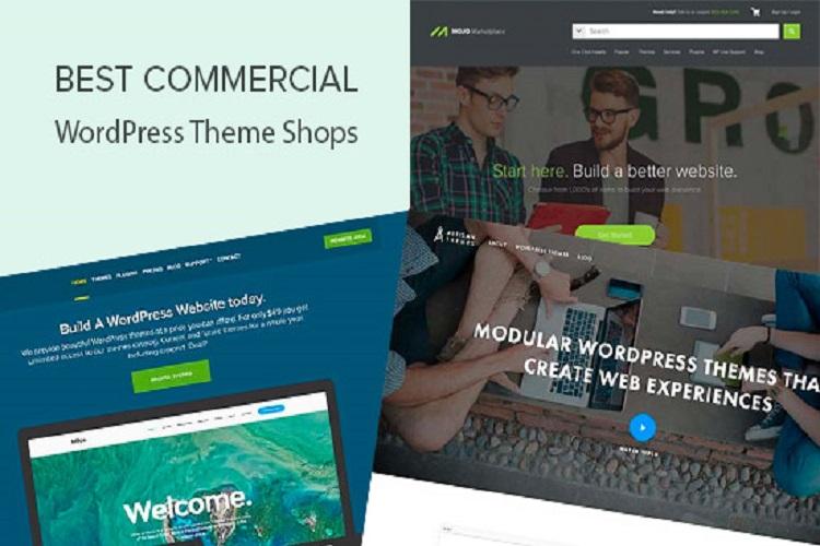 20 En İyi Ticari WordPress Tema Mağazaları