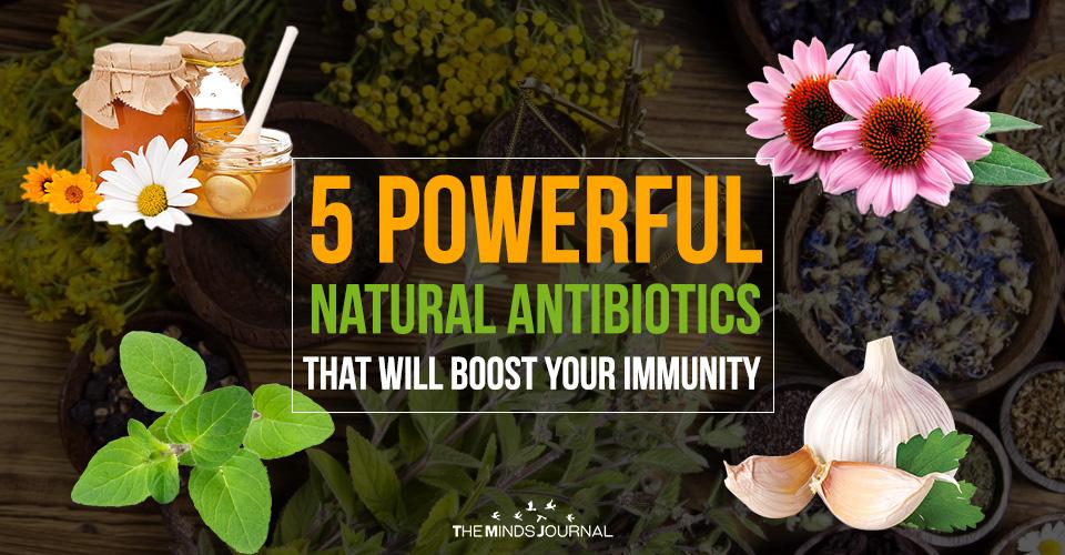 Bağışıklığınızı Artıracak 5 Güçlü Doğal Antibiyotik