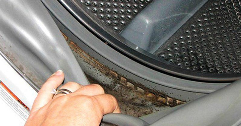 Çamaşır Makinesinin Küfünü Nasıl Temizlerim?