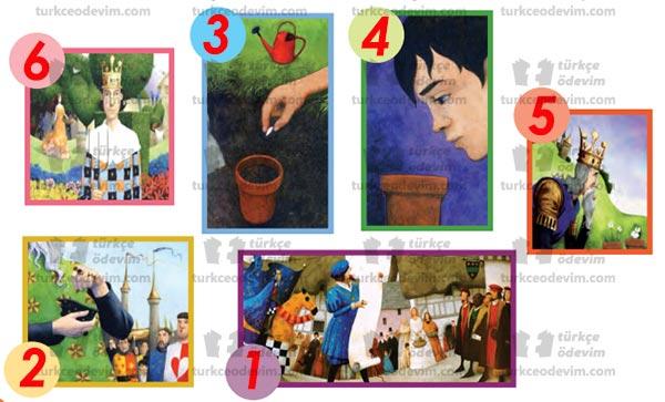 3. Sınıf MEB Yayınları Kralın Tohumu Metni Etkinlik Cevapları – Oluş Sırası