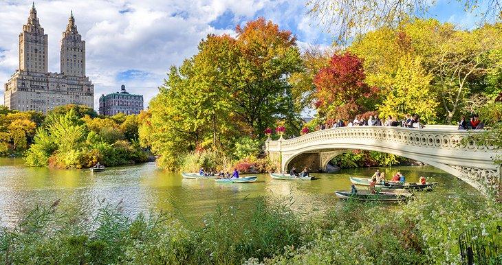 Central Parks